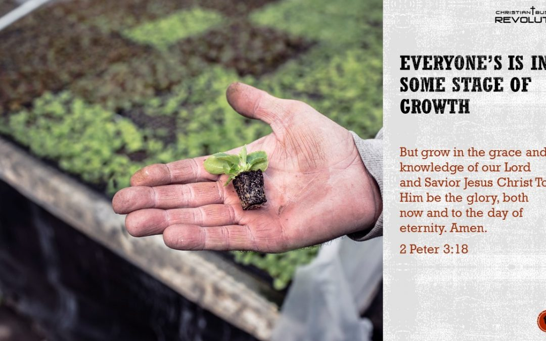 Business Bible Wisdom: Growth